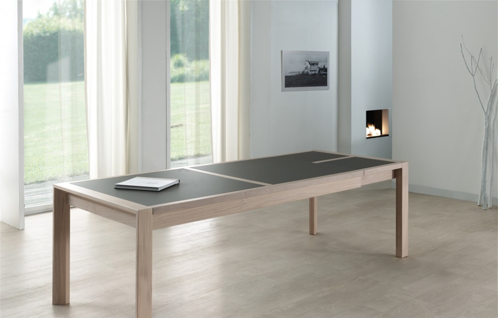 Table rect. 200(350)x100 E8 N°3 verre taupe 1 all. (1)