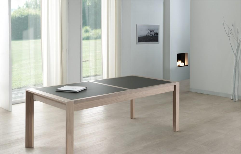 Table rect. 200x100 x077 E8 N°3 verre taupe fermée (1)